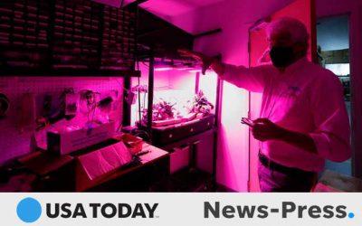 Cape Coral company creates COVID-19-killing ultra-violet light fixture, filter